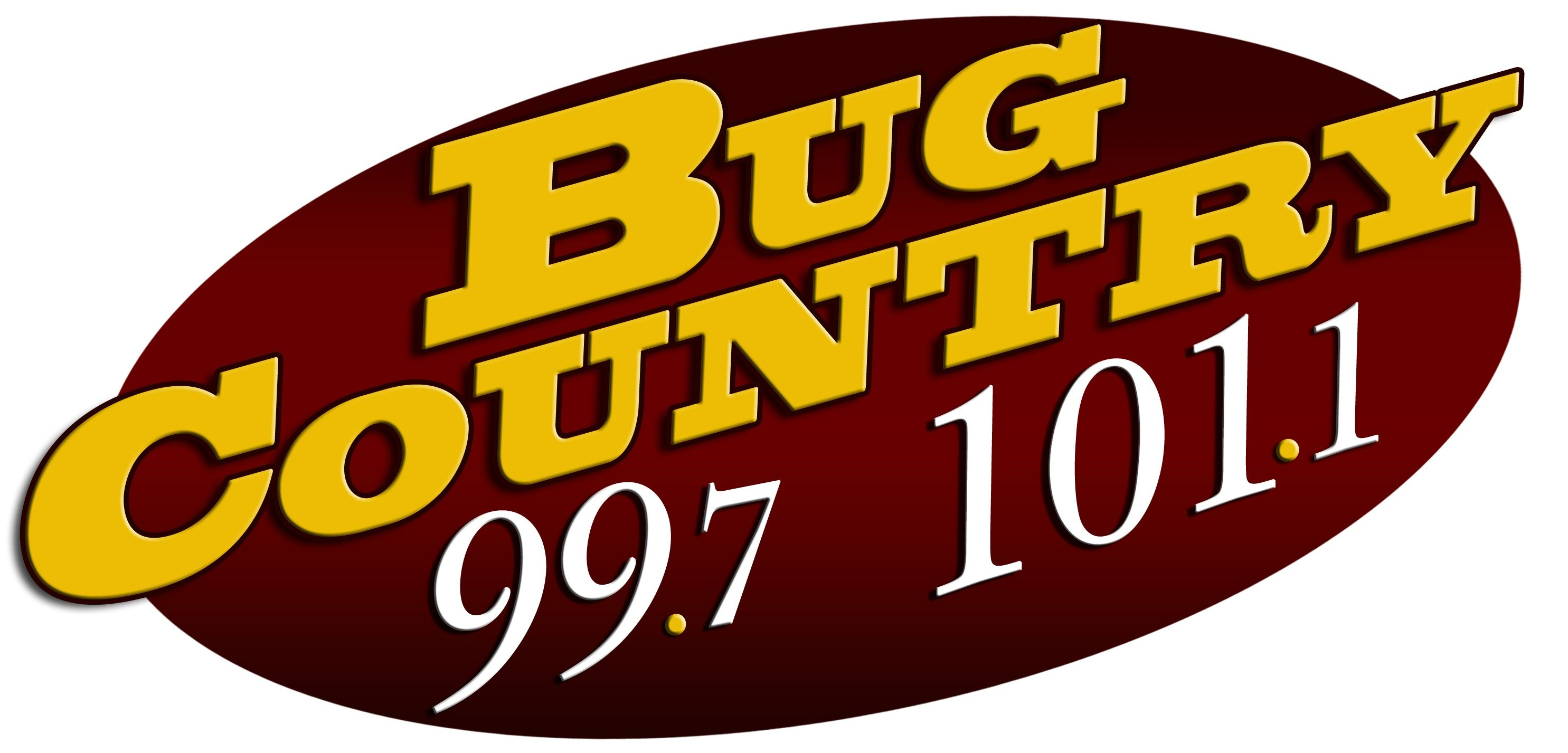 NEW BUG LOGO - 2009 copy